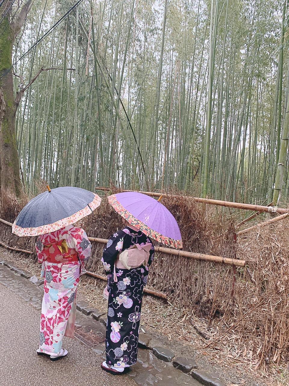 雨の京都を満喫♪2019年3月10日5
