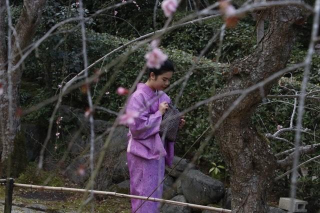 卒業旅行に着物で伏見稲荷大社へ♪2019年3月13日17
