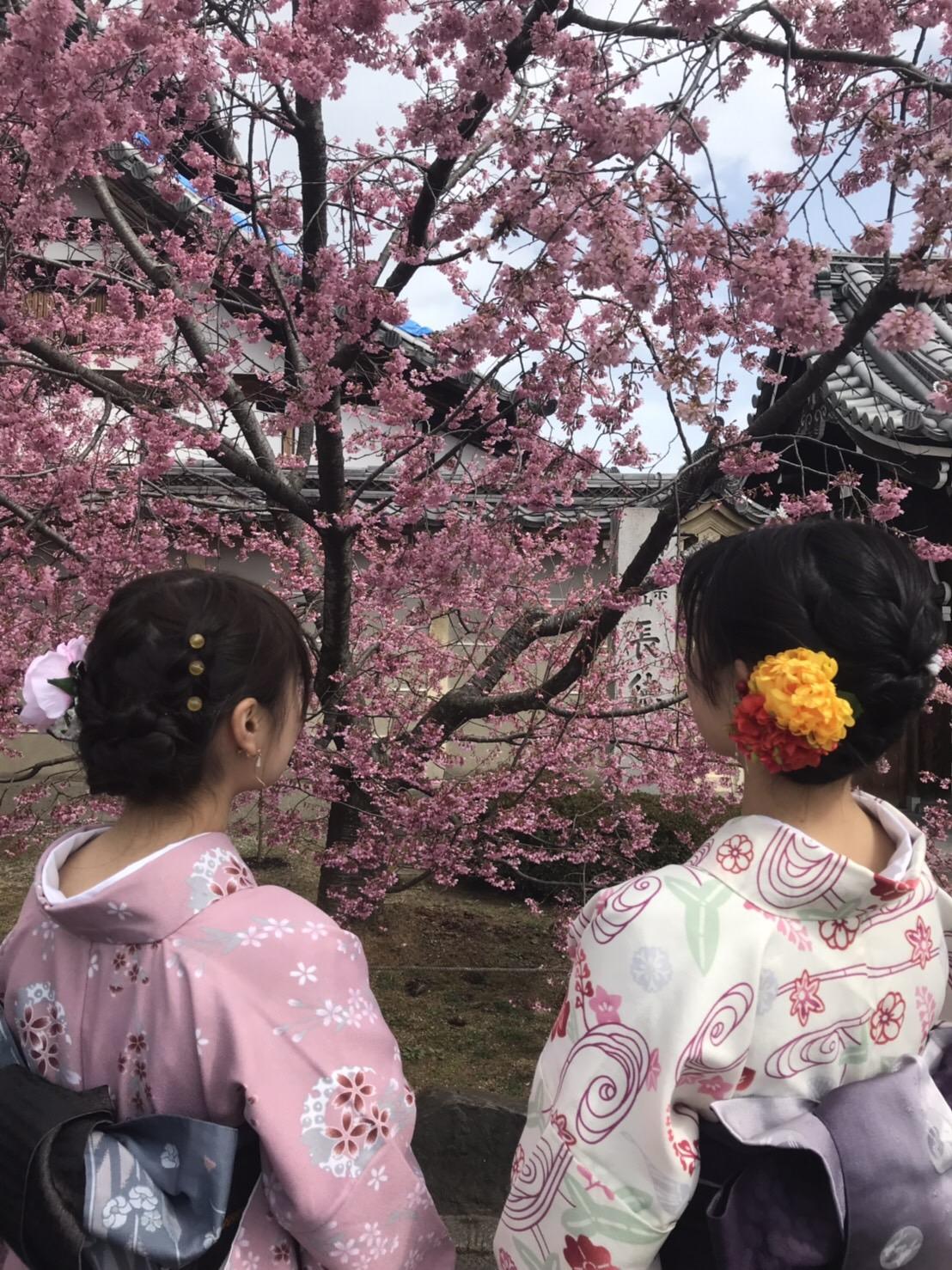 卒業旅行に着物で伏見稲荷大社へ♪2019年3月13日7
