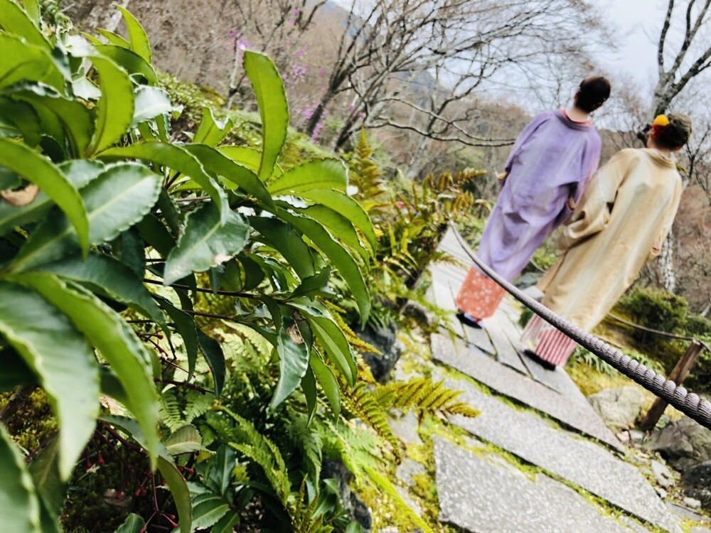卒業の思い出に着物で伏見稲荷大社へ♪2019年3月19日17