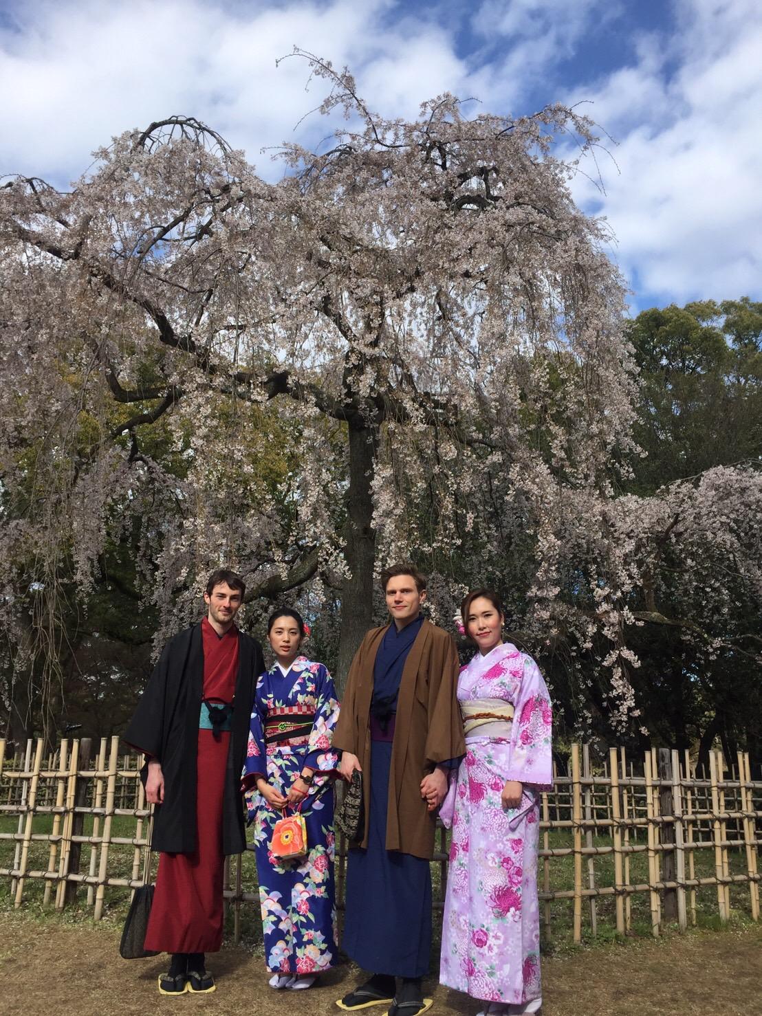 蹴上インクラインも桜咲いてきました!2019年3月31日14