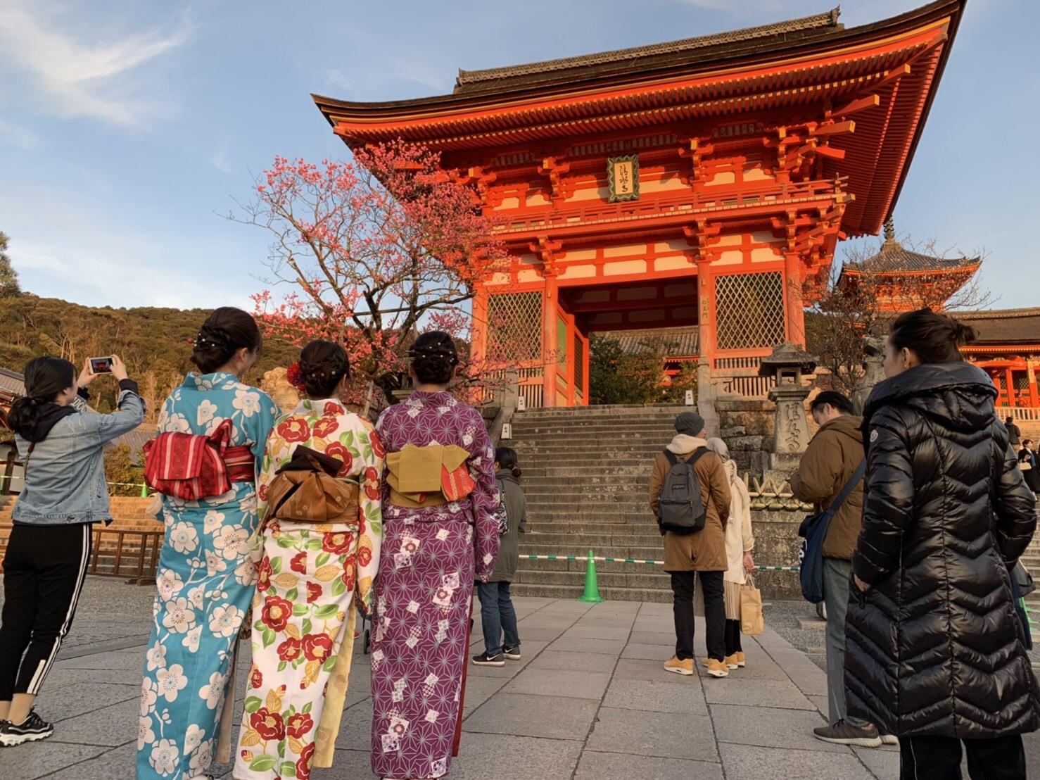 高台寺も春の特別夜間拝観始まってまぁす2019年3月9日6