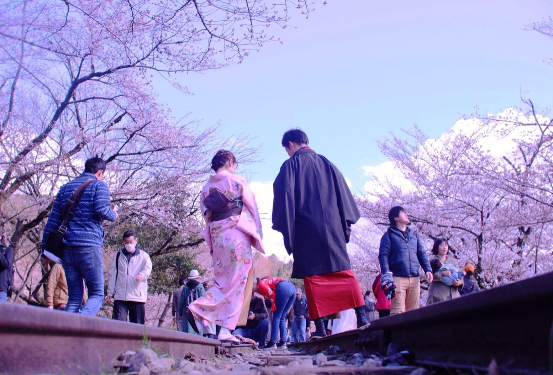 蹴上インクラインも桜咲いてきました!2019年3月31日21