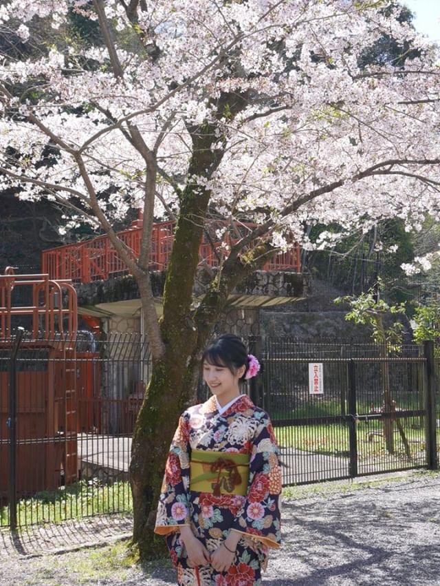 週末に京都で着物レンタル♪2019年4月13日12