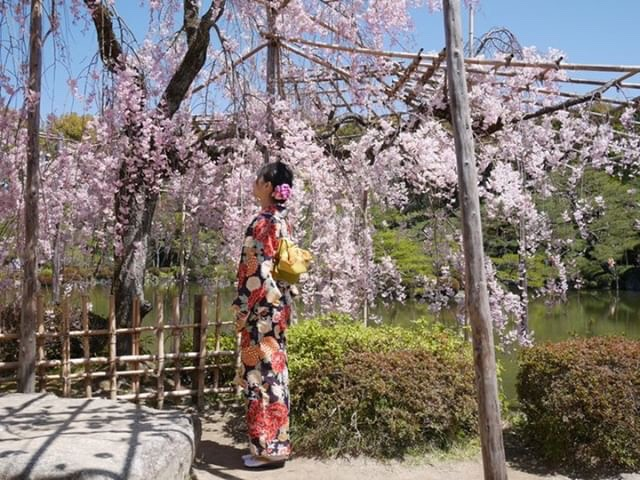 週末に京都で着物レンタル♪2019年4月13日9