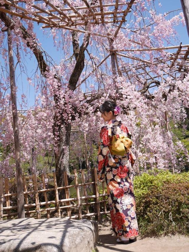 週末に京都で着物レンタル♪2019年4月13日10