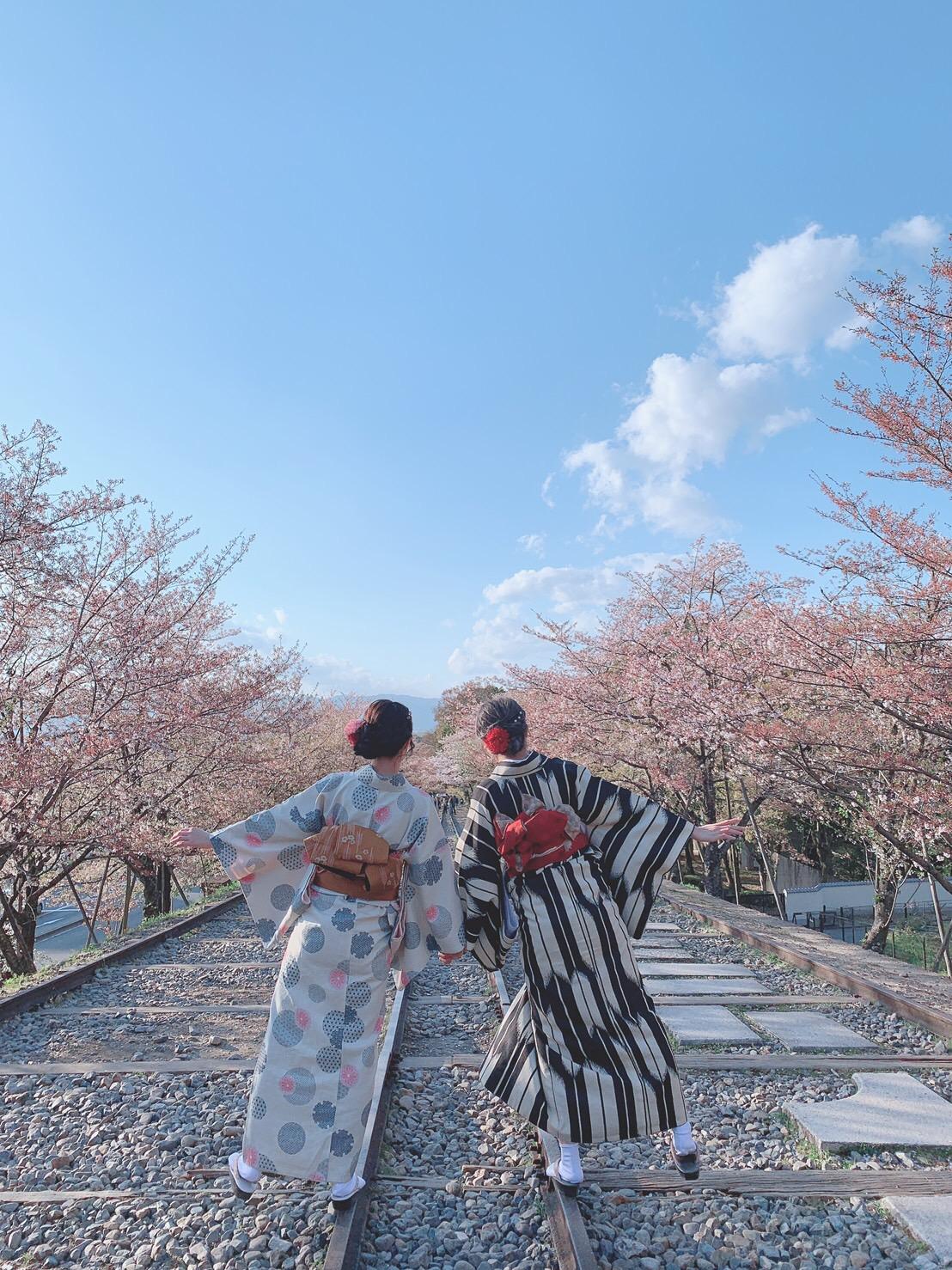蹴上インクラインと八坂庚申堂へ2019年4月15日12