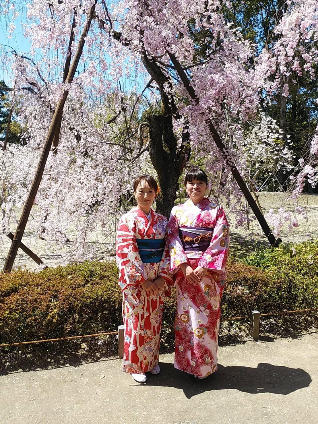 週末に京都で着物レンタル♪2019年4月13日5