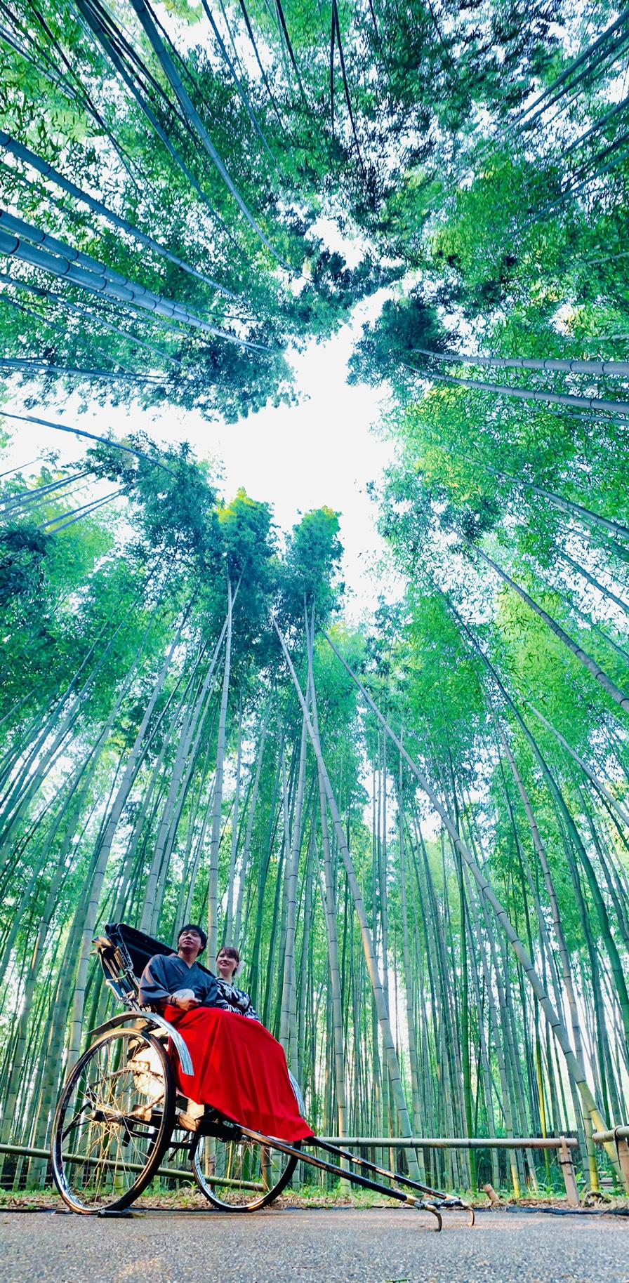夏休みの思い出に京都旅行♪2019年7月31日3