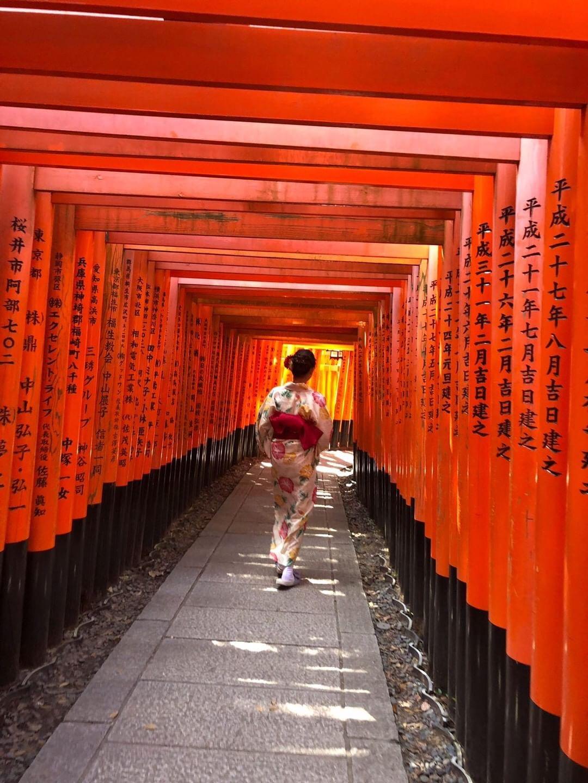 下鴨神社 糺ノ森でゆったりと♡2019年8月9日2