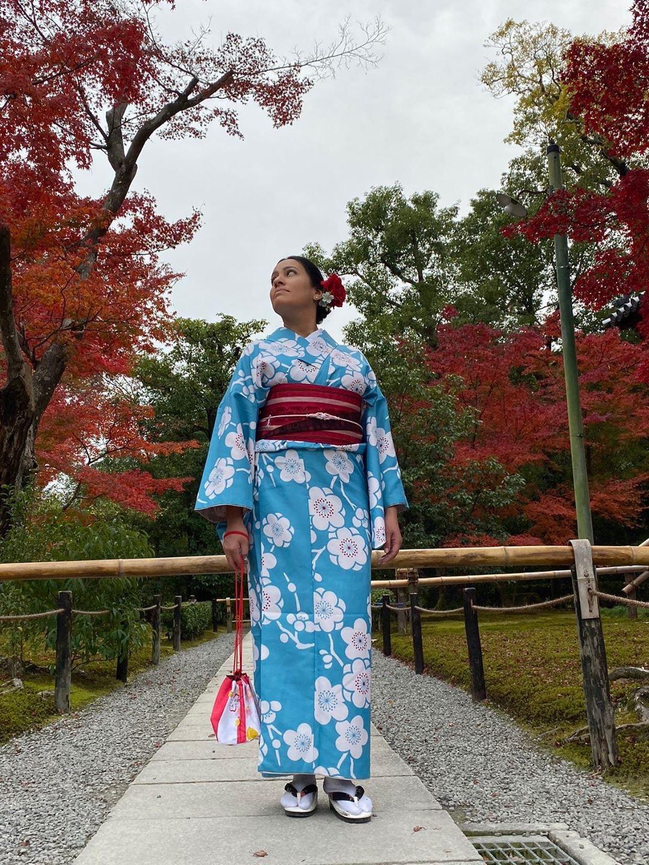 京都は紅葉見頃で~す2019年11月24日7
