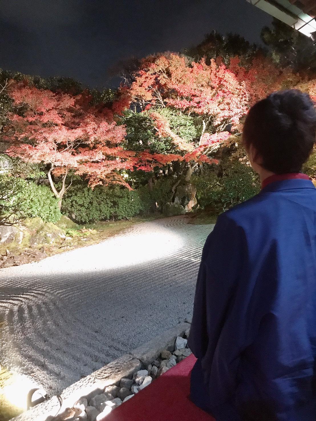 カップルで紅葉巡り♡2019年11月27日21