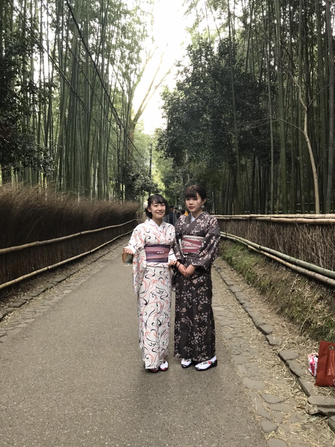 「東寺 夜桜ライトアップ」開催中2020年3月26日10