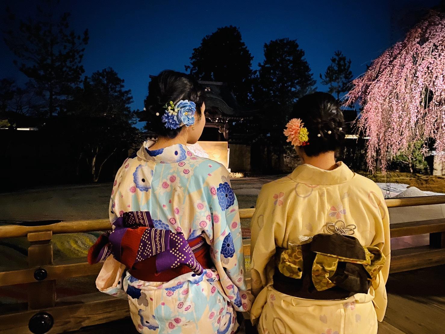 二条城桜まつり2020!着物の方は入城無料2020年3月21日16