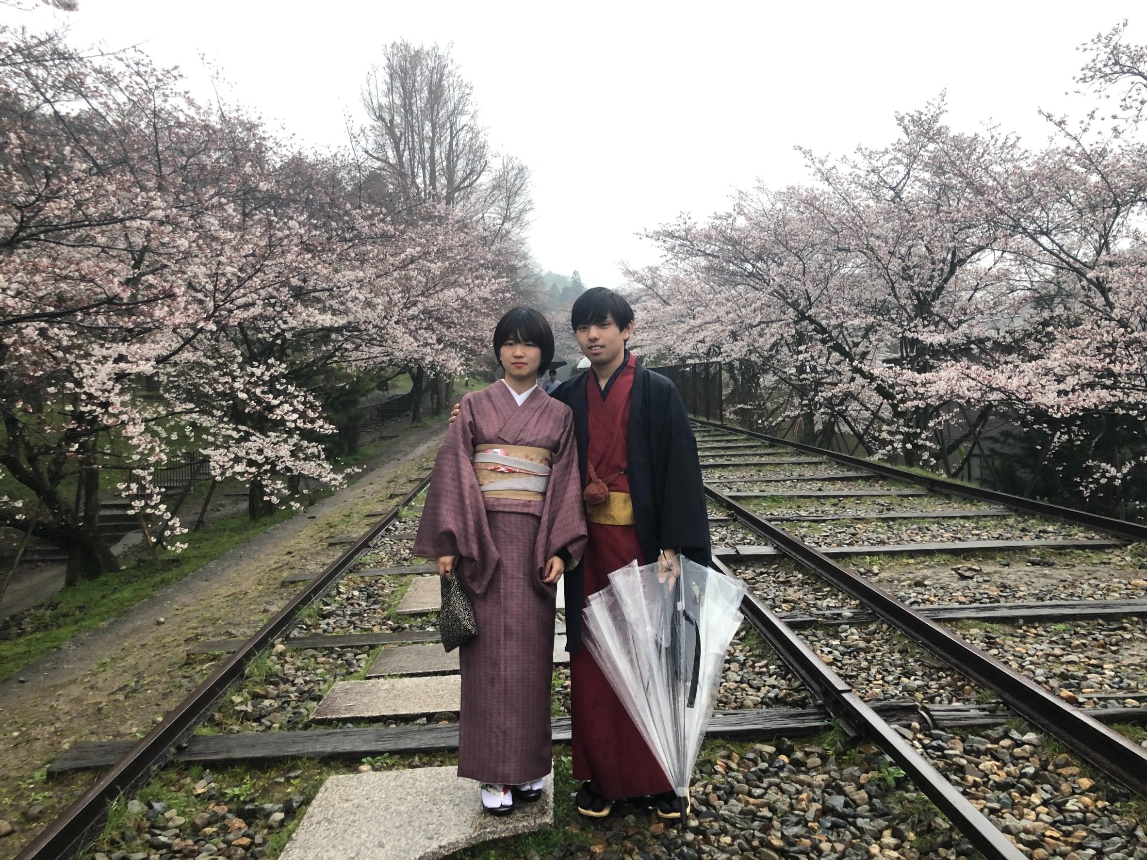 雨と桜と京都2020年3月27日4