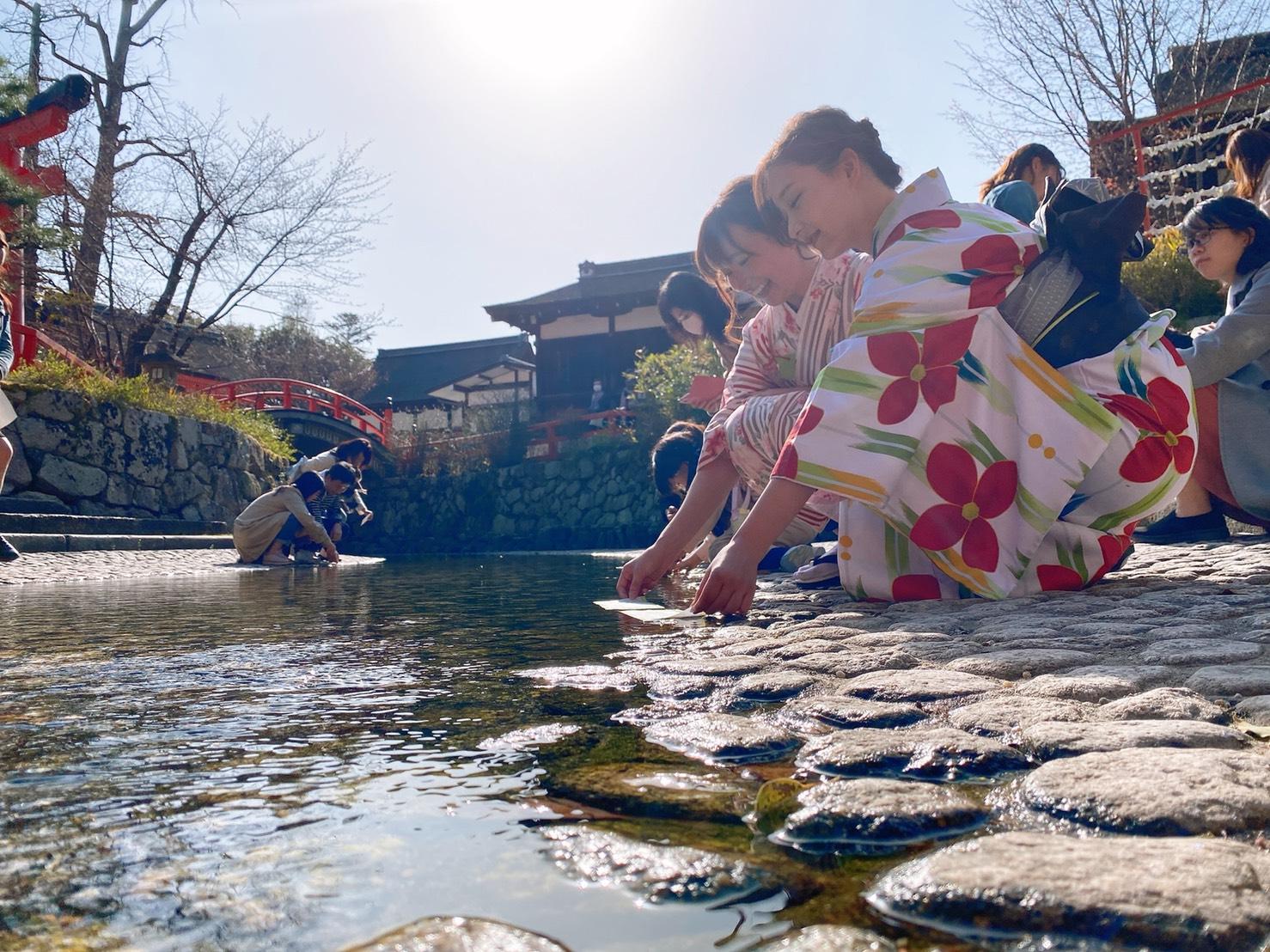 二条城桜まつり2020!着物の方は入城無料2020年3月21日8