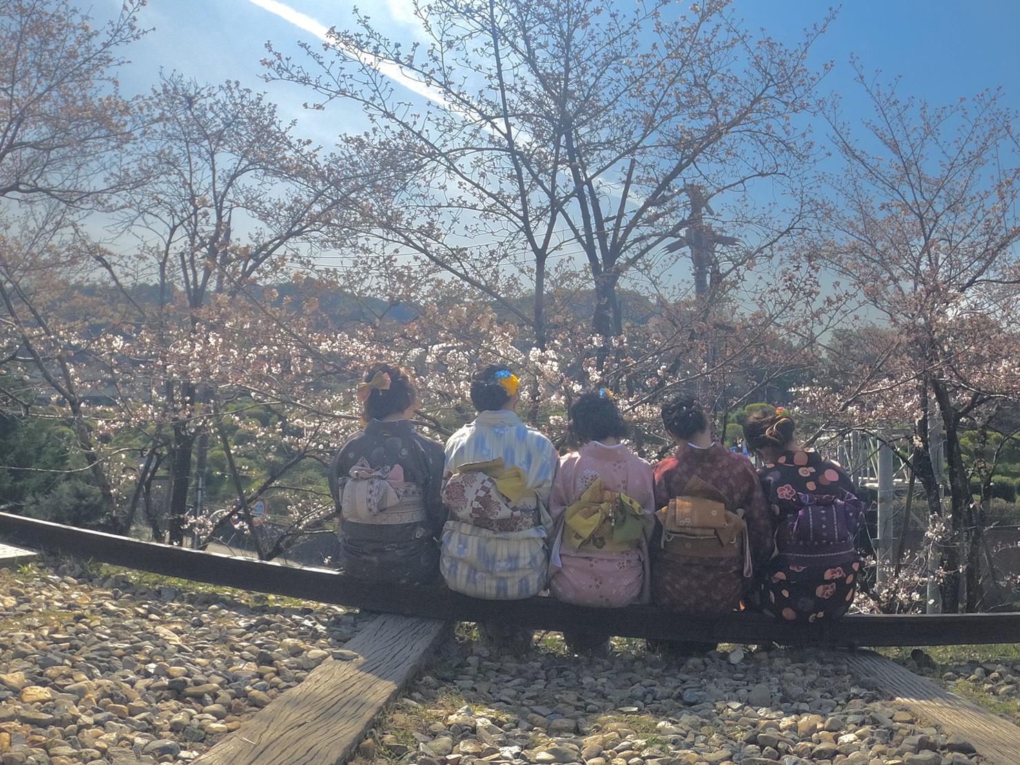 「東寺 夜桜ライトアップ」開催中2020年3月26日7
