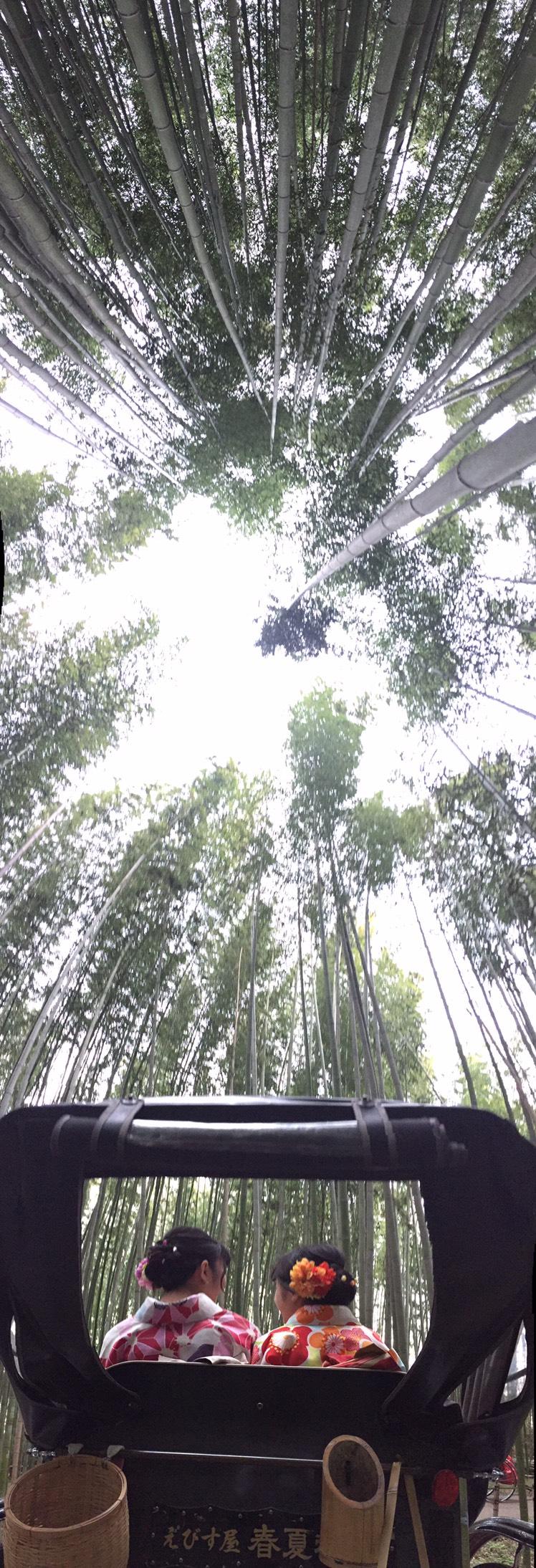 皆様、嵐山へ♪2020年3月24日7